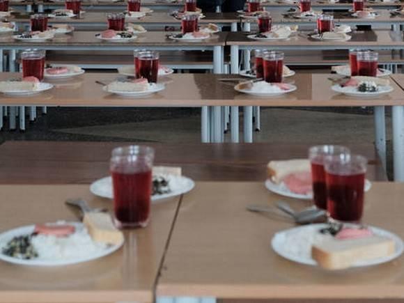 Инцидент с сырой курицей в супе петербургского школьника опровергли документально