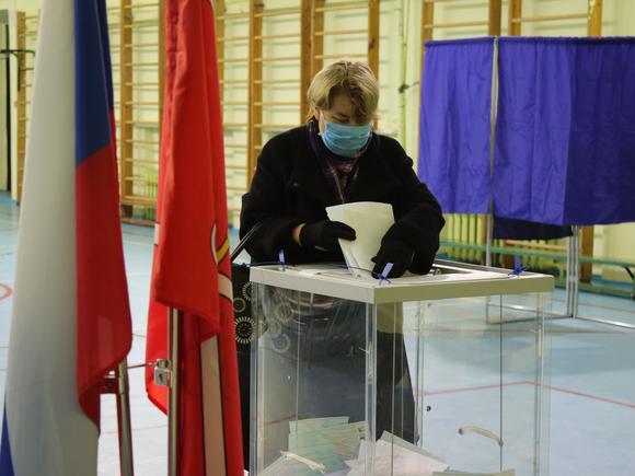 Явка на выборах в Новосибирской области в начале третьего дня голосования превысила 20%