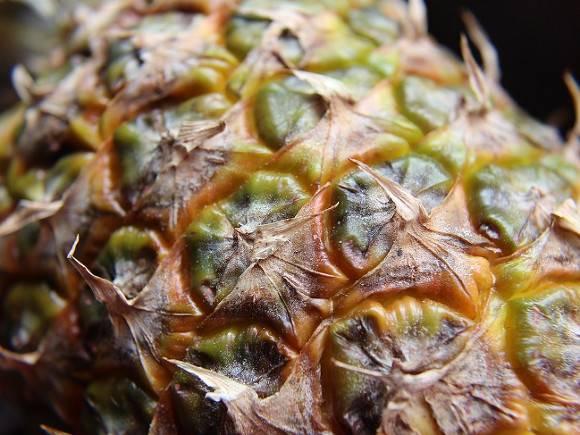 Создателю хита Pen-Pineapple-Apple-Pen подарили гору ананасов