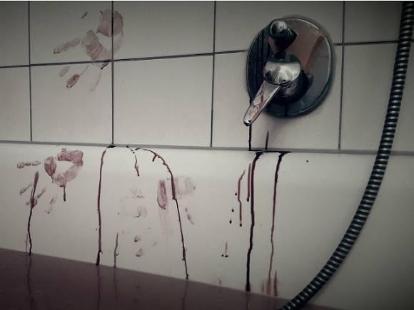 В Сертолово женщина зарезала свою сестру