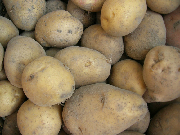 Инфляция в РФ с начала года достигла 1,4%, заметно подорожали картофель и морковь