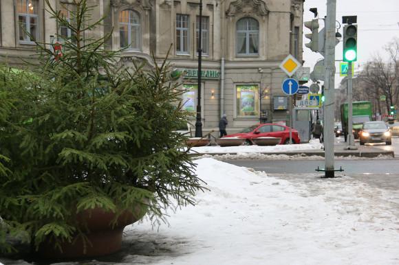 Петербуржцам рассказали, стоит ли ждать потепления