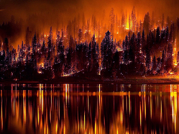 В Греции из-за лесных пожаров эвакуируют жителей пригорода Афин