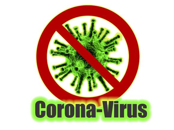 может ли коронавирус передаваться кошке через одежду