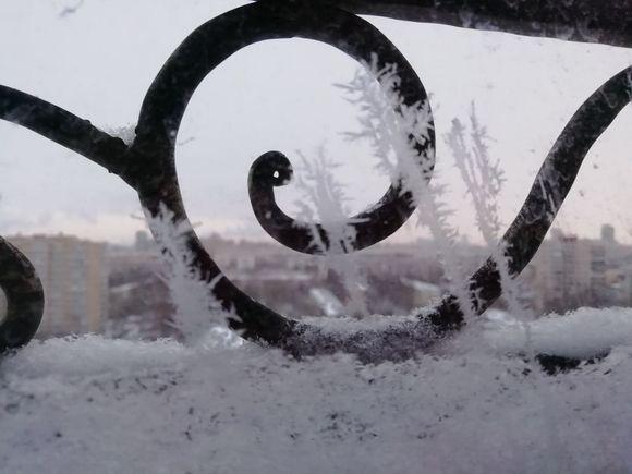 В городе на Неве около нуля и сильный снегопад впереди