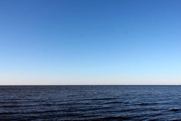 Из Финского залива вытащили утопленницу с проломленной головой