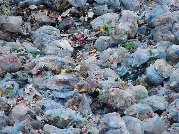 Из-за горящих в Новосибирске мусорных свалок начались прокурорские проверки