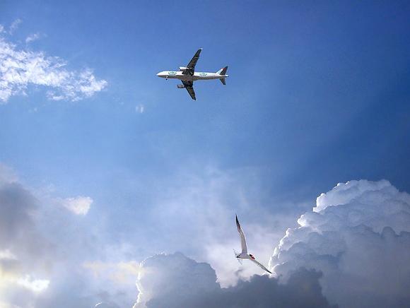В сторону Турции из Армении вылетел «загадочный» самолет