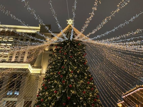 Попова дала советы по ковидному празднованию Нового года