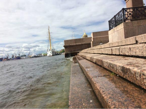 В Петербурге с моста в Неву упала молодая девушка