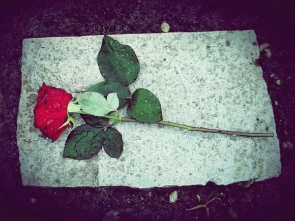 В Петербурге резко выросло число детских самоубийств