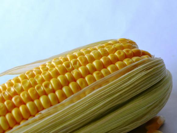 Цены на кукурузу в США взлетели до многолетнего максимума