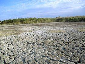 Как Крыму сегодня живется без воды