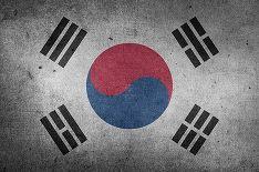 Южная Корея пришлет за пятью пассажирами с Diamond Princess президентский борт