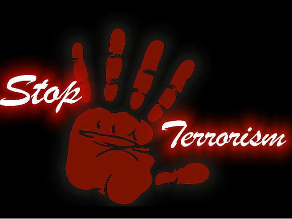 СМИ: Французы с террористическим прошлым участвуют в войне в Карабахе