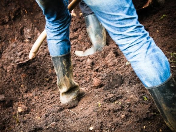 В Швейцарии закопают две тысячи трусов, чтобы проверить качество грунта