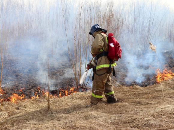 Число лесных пожаров в Якутии за сутки выросло до 235