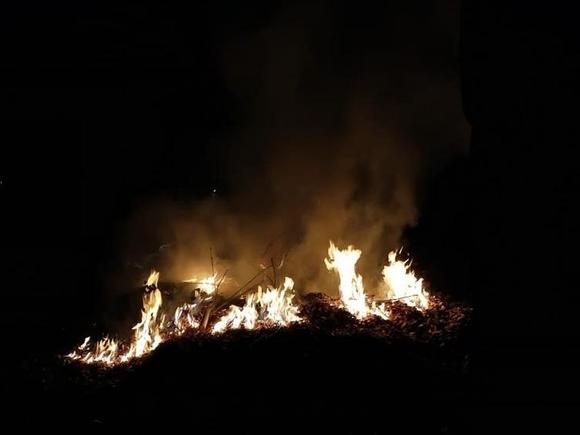 В окрестностях Афин тушат пожары