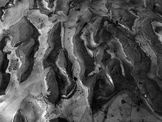 Нефтепродукты попали в озеро Голое в Хабаровском крае