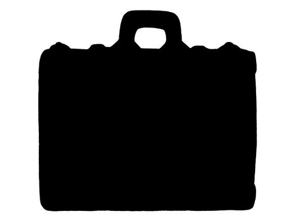 «Нездоровая психика, инфантилизм»: в «Пулково» ответили на критику нового багажного логотипа