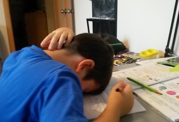 Детский омбудсмен о дистанционном обучении в Петербурге: Школы справились плохо