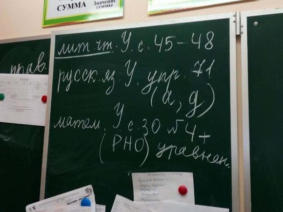 Петербуржец, заминировавший 1 сентября школу, отделался условным сроком
