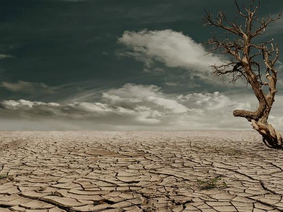 Ученые описали сценарий вымирания человечества через 500 лет
