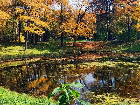 «Этой погодой нужно наслаждаться»: золотая осень продлится в Центральной России до 5октября