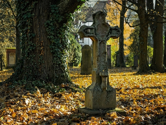 ГБУ Ритуал внедряет онлайн-сервис по поиску захоронений