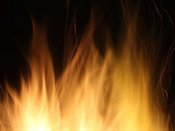 В Подмосковье сгорело здание автосервиса