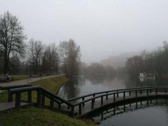 Москвичей предупредили о тумане с вечера пятницы