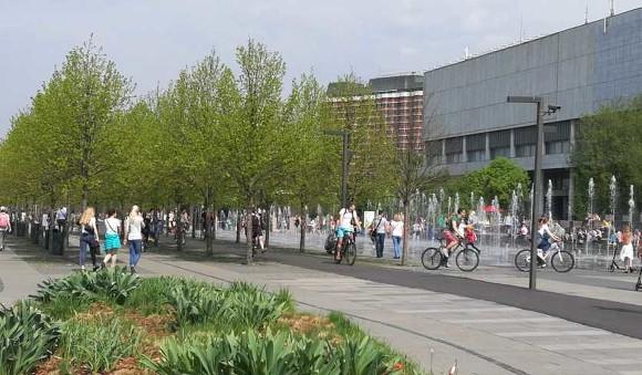 Велосипедист травмировал девушку в московском парке