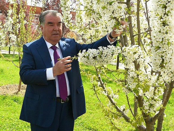 Фото с сайта president.tj