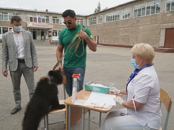 В Госдуме предложили проводить выборы по старинке